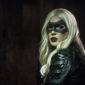 "Laurel joins forces with Team Arrow as Starling City's new Canary in an attempt to take down Danny ""Brick"" Brickwell."