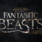 After months of silence, more details about Fantastic Beasts and Where to Find Them have finally been revealed.