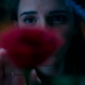 The magical first teaser for the live-action adaptation of Disney's Beauty and the Beast has just been released, filled with intricate imagery.