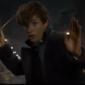 Another trailer for Fantastic Beasts and Where to Find Them was released at this year's Comic Con, featuring more characters and creatures.