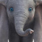Disney does its best to reinvent the wheel with 'Dumbo,' but more human characters don't always inspire more human emotions.